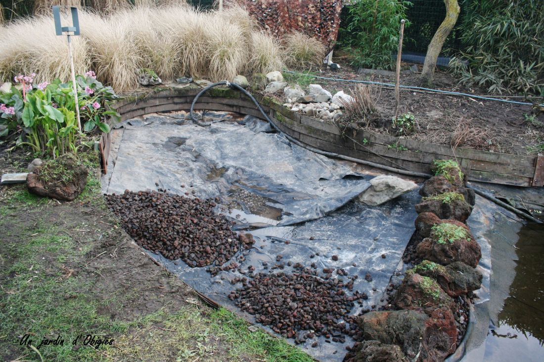 Vidange bassin de lagunage, un jardin d' Obigies