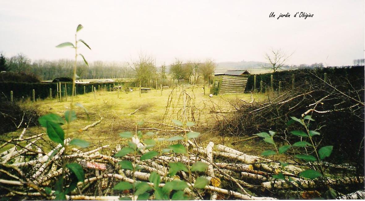 Jardin 004